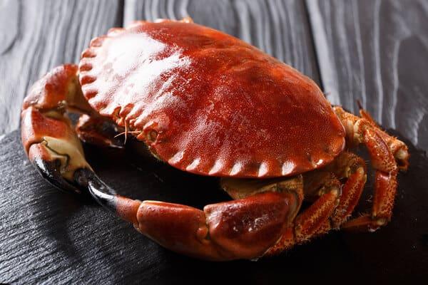 煮熟的螃蟹