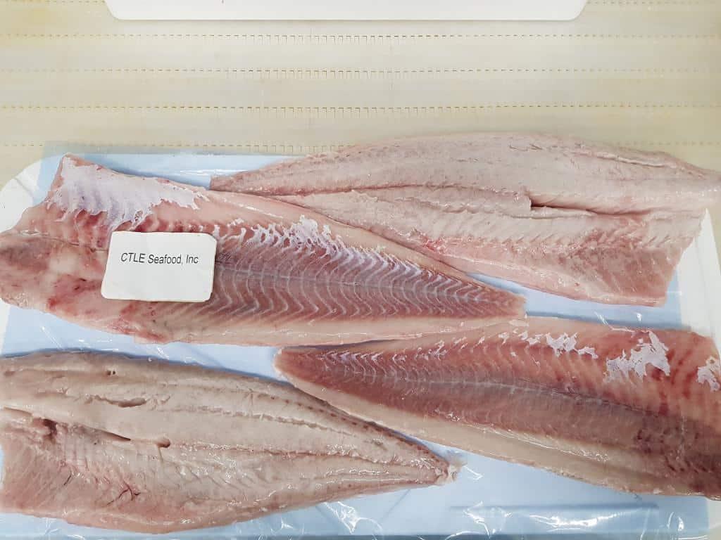 冷冻的Saithe鱼片