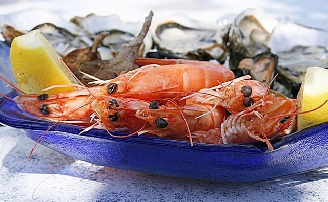 frozen seafood exporter ctle seafood inc