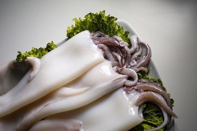 frozen fish supplier ctle seafood inc